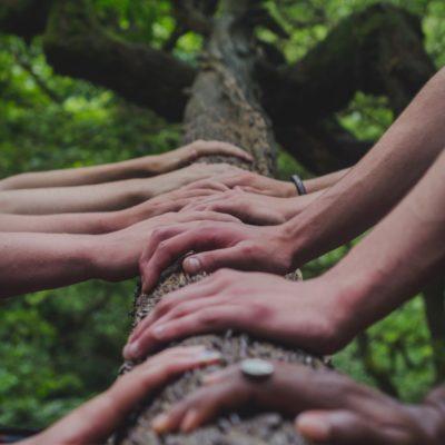 Gemeinsamkeit - Wir reichen uns die Hände